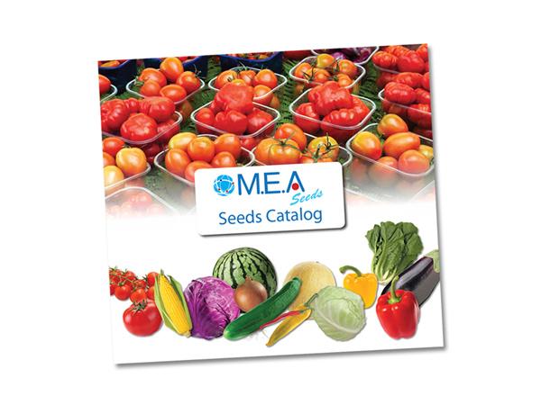 עיצוב והפקת חוברת בתחום החקלאות